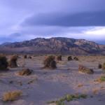 Death Valley N.P.1996-Paul HAAN