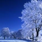 Landscape in snow 01 L-Holzem-Paul HAAN