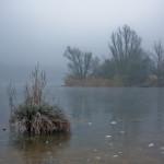 Baggerweiher im Winter
